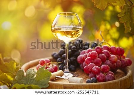 Wineglass and grape on wooden barrel on grape plantation background - stock photo