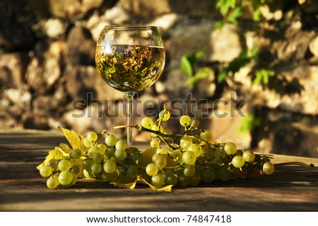 Wineglass and grapes - stock photo