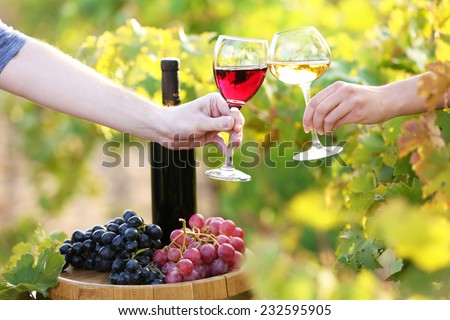 Wineglass in hand on grape plantation background - stock photo