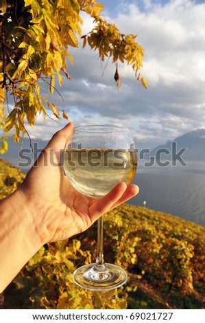 Wineglass in the hand against vineyards in Lavaux region, Switzerland - stock photo