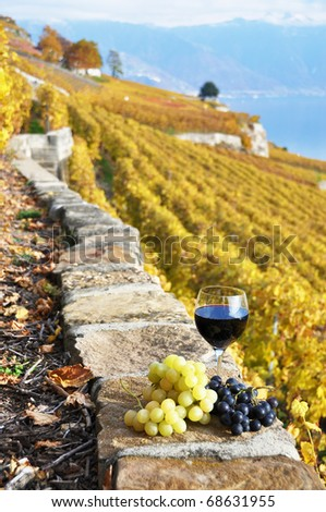 Wineglass on the terrace vineyard in Lavaux region, Switzerland - stock photo
