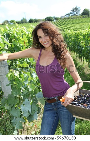 Winegrower woman standing in vine rows with basket of grapes