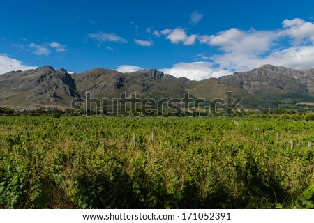 Winelands Franschhoek, Capetown, South Africa - stock photo
