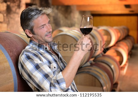 Winemaker checking red wine quality in wine cellar - stock photo