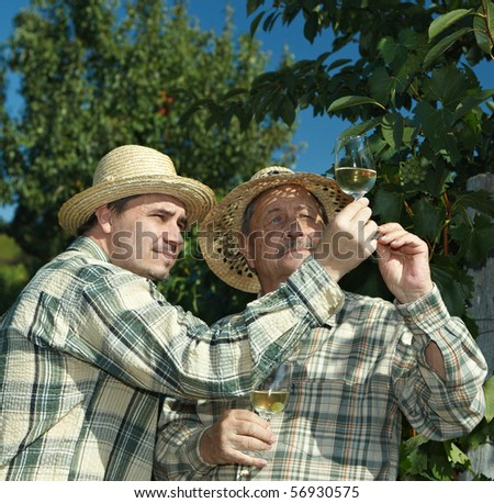 Winemakers testing wine outdoors in vinery. - stock photo