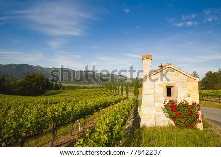 Winery at Napa valley - stock photo