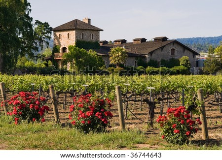 Winery in Napa Valley - stock photo