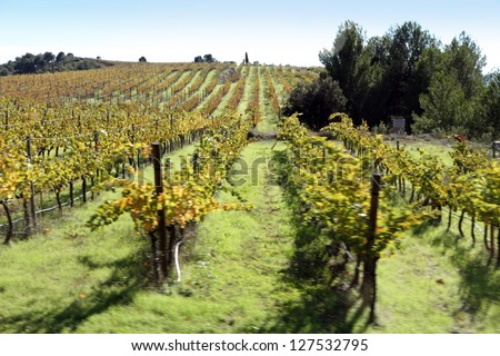 Wineyards and wineries, Montsant mountains, Tarragona, Catalonia