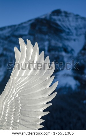 Wing ice carving - stock photo