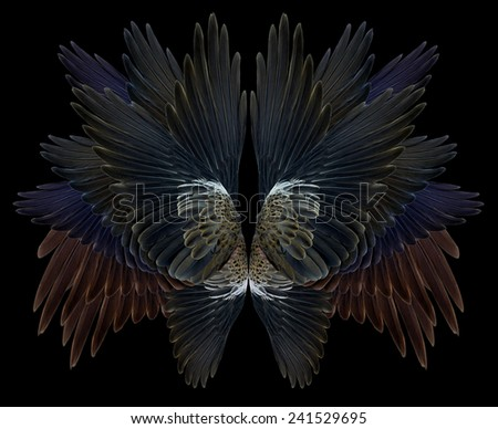 wing Isolated on background - stock photo