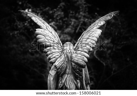 Winged angel gravestone back view in black and white - stock photo