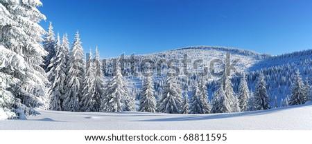 winter - stock photo