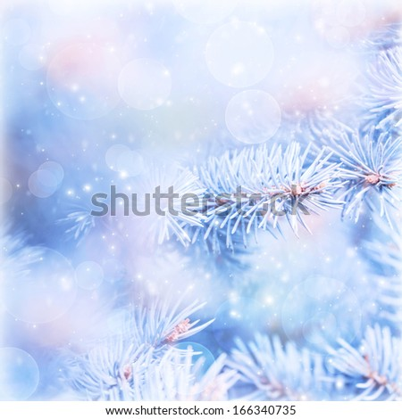 Winter abstract blur background, natural blue wintertime background, fir tree branch covered with hoar, bokeh light, cold weather, winter season holidays time, shallow depth of field - stock photo