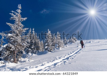 winter adventure in the Carpathian mountains - stock photo