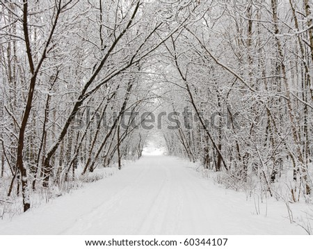 Winter alley - stock photo