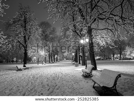 Winter alley in park and shining lanterns.