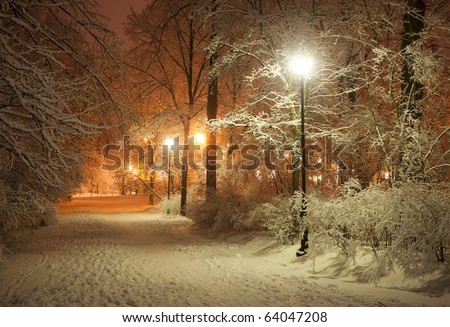 Winter alley in park and shining lanterns. Night shot.