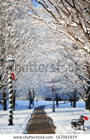 Winter Alley with Snow Covered Trees and Santa Hat on the Bench. Outdoor. Beautiful Sunny Day. - stock photo