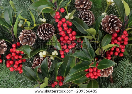 Winter and christmas background with red holly berry clusters, mistletoe, spruce fir leaf sprigs and pine cones. - stock photo