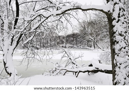 Winter at a glance: River with snow and ice framed by trees in foreground after a blizzard early in March, Oak Brook, Illinois - stock photo