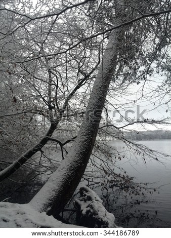 Winter at Lakeside - stock photo