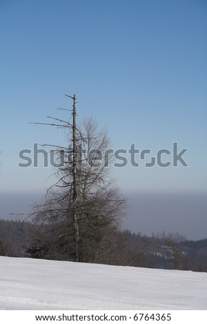winter at mountains - Beskid - Poland