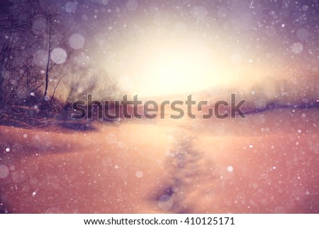 winter background blur forest snowflakes bokeh - stock photo