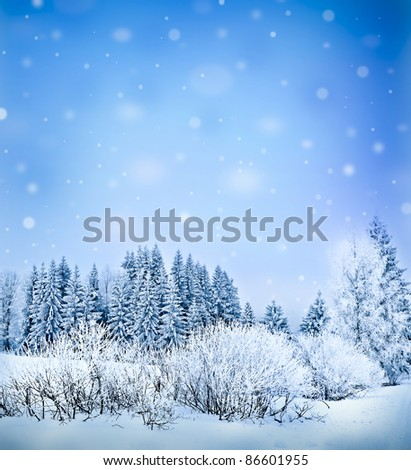 winter background with copyy space for text - stock photo