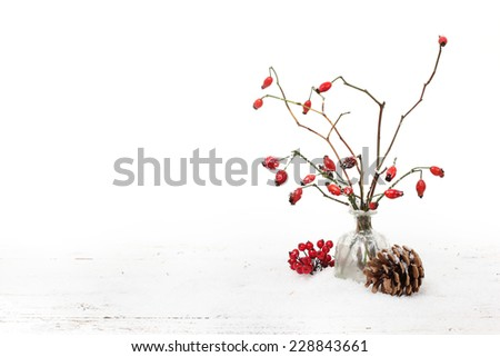 Winter background with red berries - stock photo