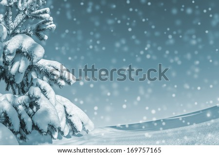 Winter background with snow-covered tree - stock photo