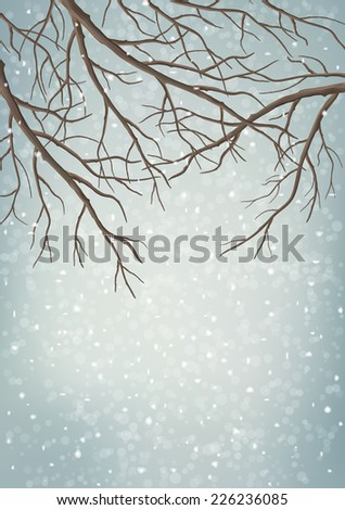 Winter background with tree branches, snowfall - stock photo