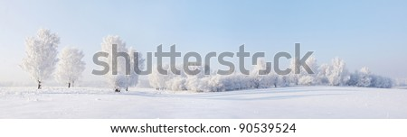Winter beautiful landscape with trees covered with hoarfrost - stock photo