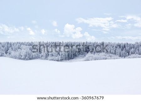 Winter. Beautiful winter landscape with snow covered trees - stock photo