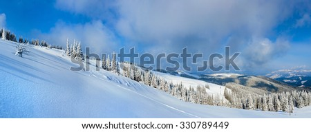 Winter calm mountain landscape with fir forest and sheds group on slope (Carpathian Mountains, Ukraine).  Seven shots stitch image.