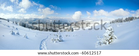 Winter calm mountain landscape with fir forest and sheds group on slope (Carpathian Mountains, Ukraine).  Three shots stitch image. - stock photo