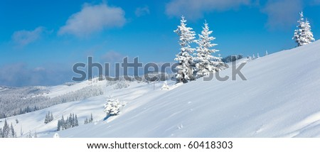 Winter calm mountain panorama landscape with snow covered firs and on ridge (Kukol Mount, Carpathian Mountains, Ukraine). Two shots stitch image. - stock photo