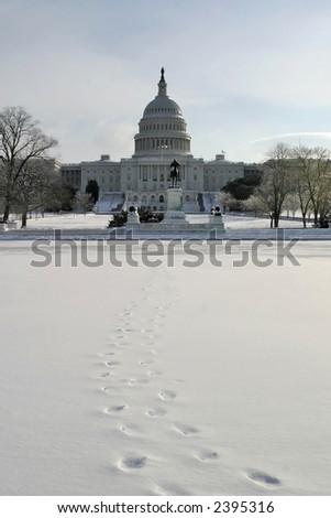 Winter Capitol - stock photo