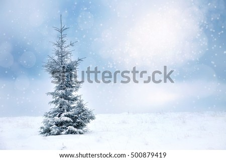 Winter Christmas landscape background with spruce and snowflakes