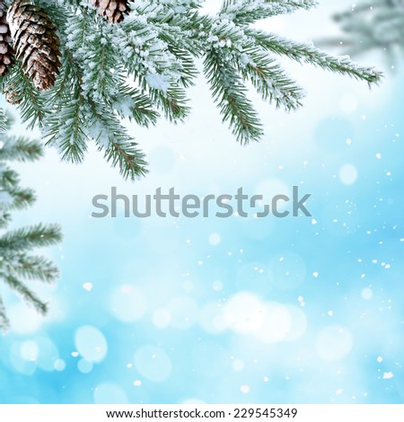 winter christmas night landscape - stock photo