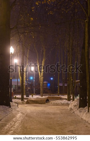 Winter city park at night