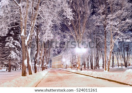 Winter colorful landscape - colorful alley in the park with frosty trees and bright lanterns