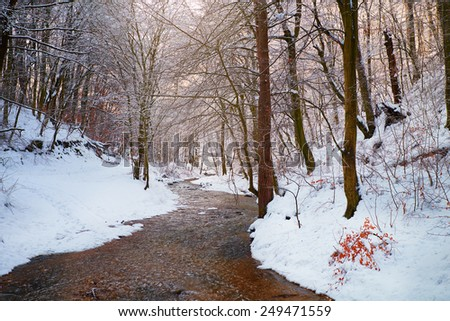 Winter creek - stock photo