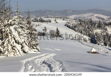 Winter day in the mountains, snow, sunny weather, the haystack in the snow, sledding trail between firs