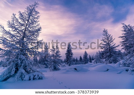 Winter day landscape with forest, cliffs, cloudy sky and sun