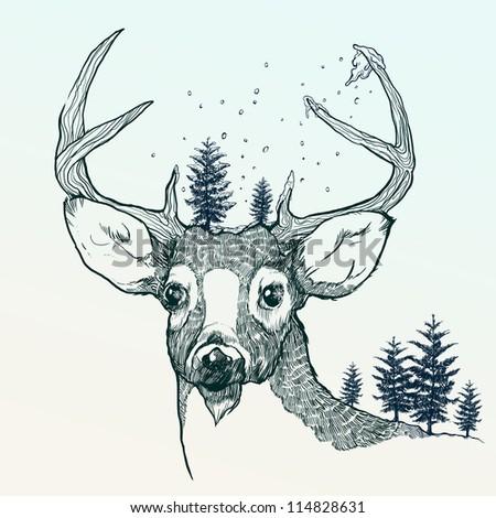 Winter deer - stock photo