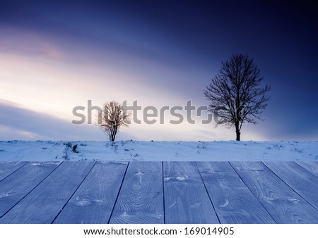 winter field and withered trees landscape - stock photo