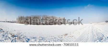 winter field panorama