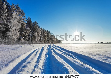 Winter field under blue sky