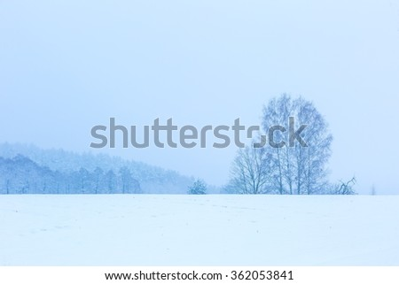 Winter field under cloudy gray sky. European fields landscape at winter.