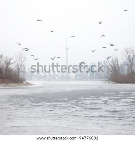 Winter foggy landscape, city skyline, lake, flying birds. - stock photo